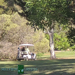melview-golf-cart-250
